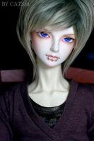 Face-up: LUTS Wintery 2010 mod by cats10