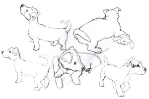 Puppy Sketches by See-past-the-madness