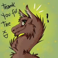 Thank you for the llama by Zef000