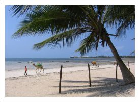 Mombasa Beach by IsaFortyThirty1
