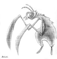 Insect by En-B