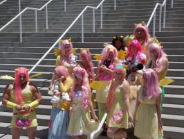 AX2014 - MLP Gathering: 31 by ARp-Photography