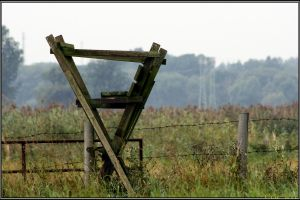 Along the Fence by Clu-art