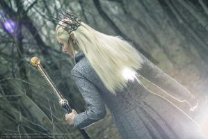 Thranduil cosplay by Ainaven
