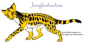 Create a Warrior Cat: Jungle by Fire-Goddess6