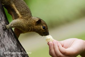 Kissing the Food by adjieguswara-art