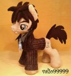 My Little Pony  Doctor Whooves Plush Handmade by valio99999