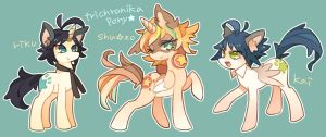 trichronika ponies by masssssan