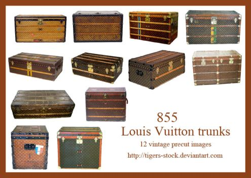 855 Vintage Louis Vuitton Trunks by Tigers-stock