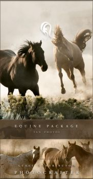 Package - Equine - 1 by resurgere