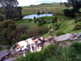Hobbiton cat with Green Dragon Inn by Kittycatpryde