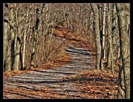 Mississippi River Path by bamako