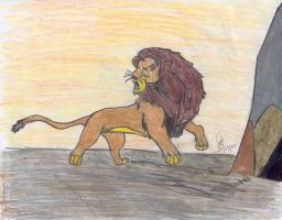 Lion Alone by Blueeyes0001