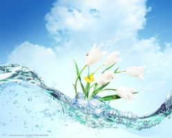 Flowers in the water 1 by red-FeNIks