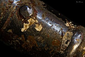 Rusted tool by CharlieMerci