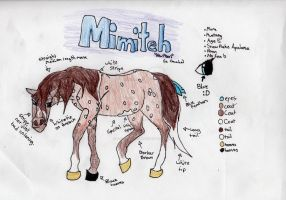 Contest: Mimiteh Reference by SodaHorse73