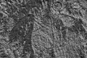 Resources: texture #39 by nadav