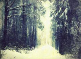Winter-Forest by Kartharziss