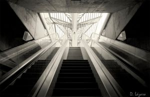 Stairs to the light by du-la