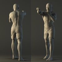 Male anatomy study by Maximiliaan