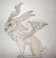 Wolpertinger by Chequer