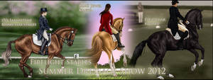 Summer Dressage Show 2012 by mapal