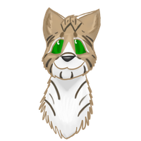 Fernpaw the WindClan Apprentice by cantbreath45