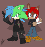 C8LIN the Hedgie's commission by ShockRabbit