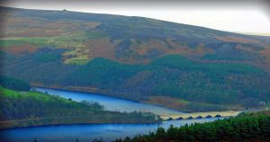 lady bower by Duckmad