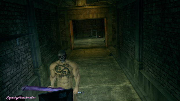 Saints Row 3 Nude mid rescue op by SqueakyMarshmallow