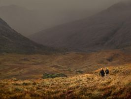deep into glen affric by Katoman