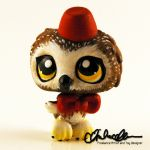 Doctor Whooo Custom LPS by thatg33kgirl