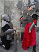Fasching 2015 Cardboard knight and mage 2 by killermedic