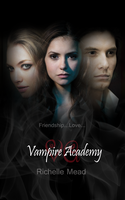 Vampire Academy Cover by teratini