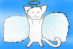 angel kitty by CoolCodeCat