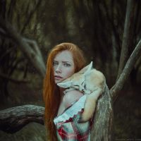 Foxes by AnitaAnti