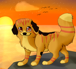 Contest Entry/ sunset by MissLayira
