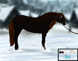 Skaal Horse Import by Kamieno