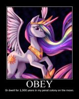 Obey by Shire-Folk