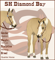 SK Diamond Bay by SkylineBB