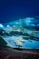 Road to Volcan Irazu Infrared by otas32
