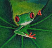 Detail Frog WIP by 8DFineArt
