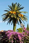 Colours of Cavtat, Croatia by wildplaces