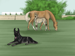 Strange horses, silly dog by ArsenicLaced-Faimes