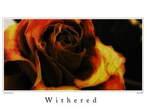 withered_by_johannes_st.jpg
