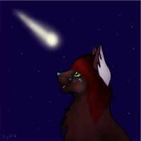 Comet by RenesmiFadr
