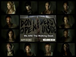 The Walking Dead: Collage by xxBrandy