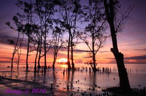 Sunrise in Amborawang Laut by ardefa