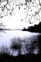 Loch: winter view by Coigach