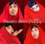 Fausto's Shirt Puppy by SolStock